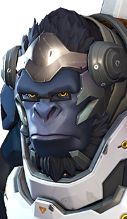Icons Packs And Ranks Overwatch Boost Heroes Winston